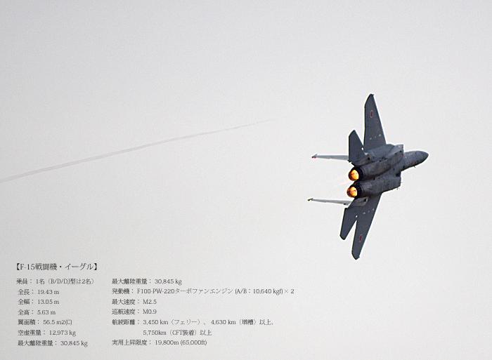 < 岐阜基地航空祭に行ってきた >その1_c0183700_22234531.jpg