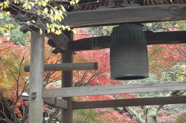 本土寺へ_c0051105_043263.png