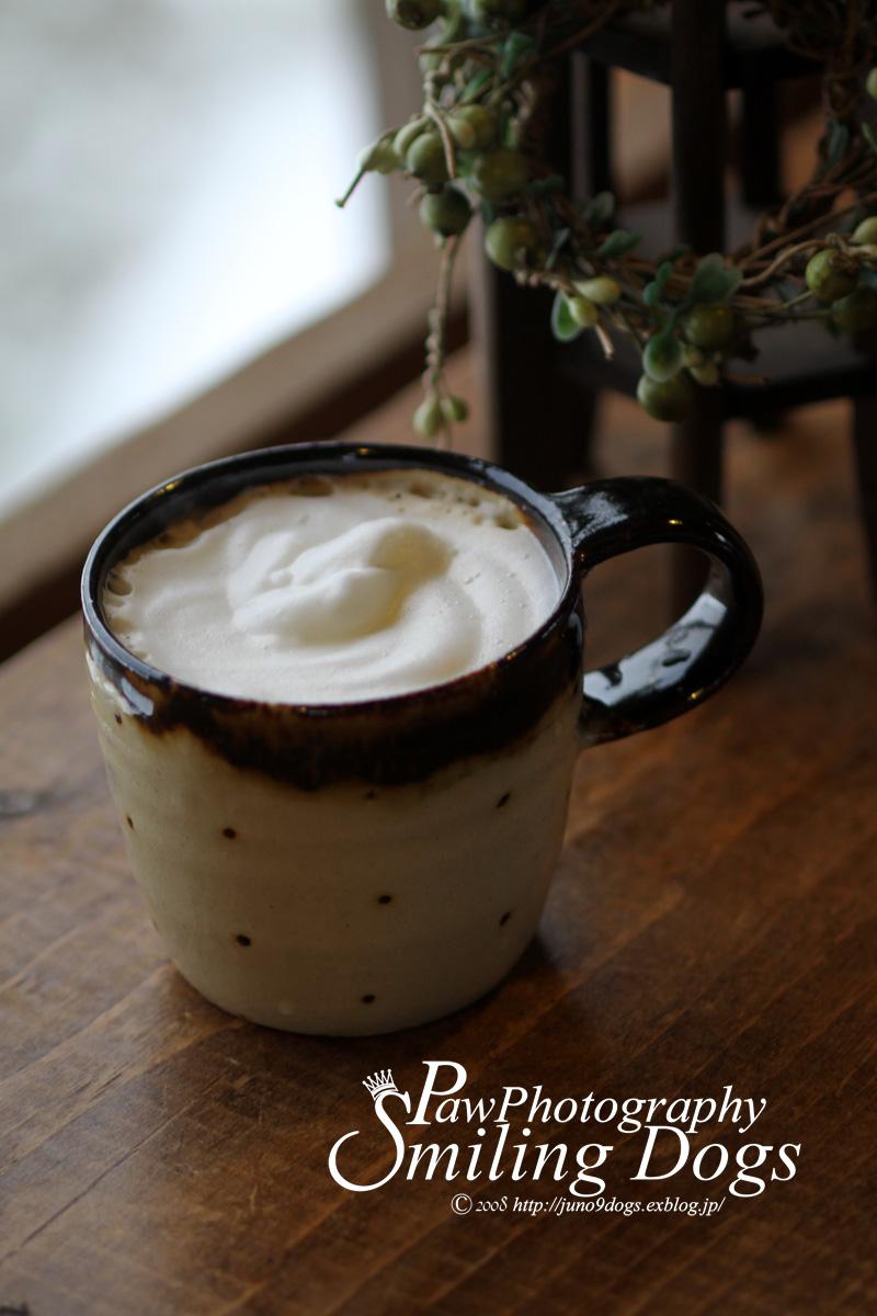 ふっわふわのミルクでカフェオレ_f0116805_22183895.jpg