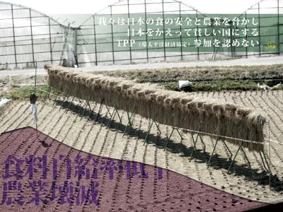 b0133911_17573746.jpg