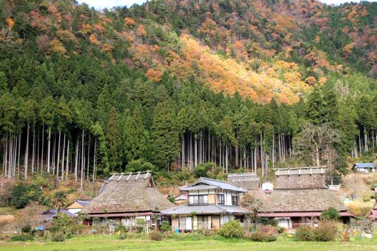 美山町 かやぶきの里 秋色_e0048413_18481462.jpg