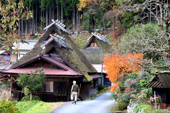 美山町 かやぶきの里 秋色_e0048413_18482686.jpg
