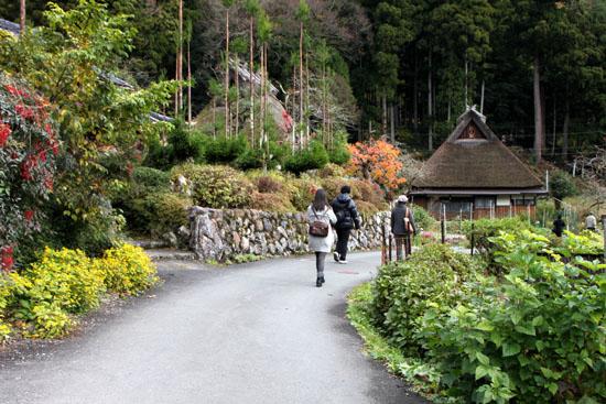 美山町 かやぶきの里 秋色_e0048413_18484843.jpg