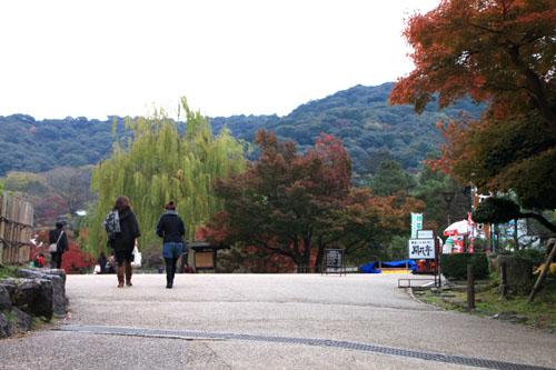 八坂神社から円山公園・長楽寺 紅葉を求めて_e0048413_22213870.jpg