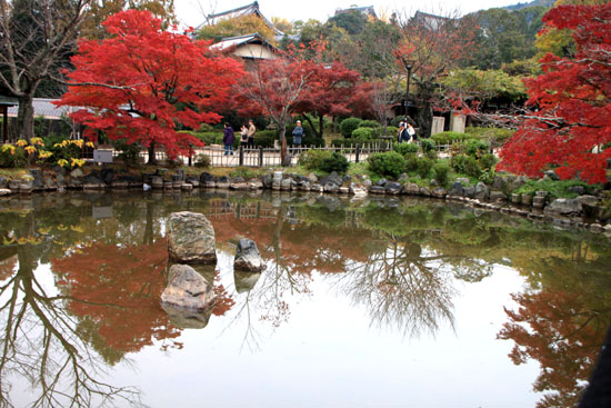 八坂神社から円山公園・長楽寺 紅葉を求めて_e0048413_22214930.jpg
