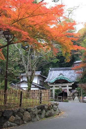 八坂神社から円山公園・長楽寺 紅葉を求めて_e0048413_22222448.jpg