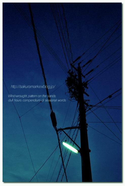 街灯輝く夕闇。_f0235723_19361254.jpg