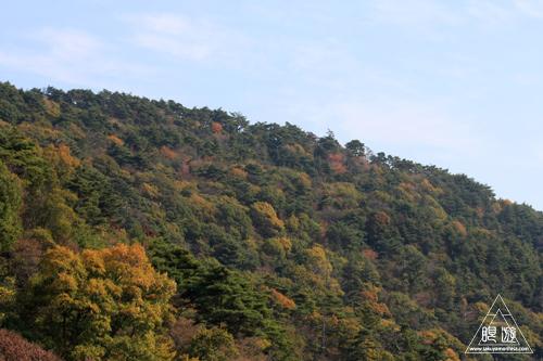 209 野呂山 ~瀬戸内の紅葉~_c0211532_19284227.jpg