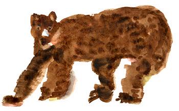 クマの繪_b0197084_22343564.jpg