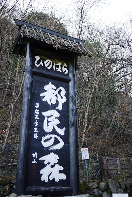 三頭山③_a0127090_14511185.jpg