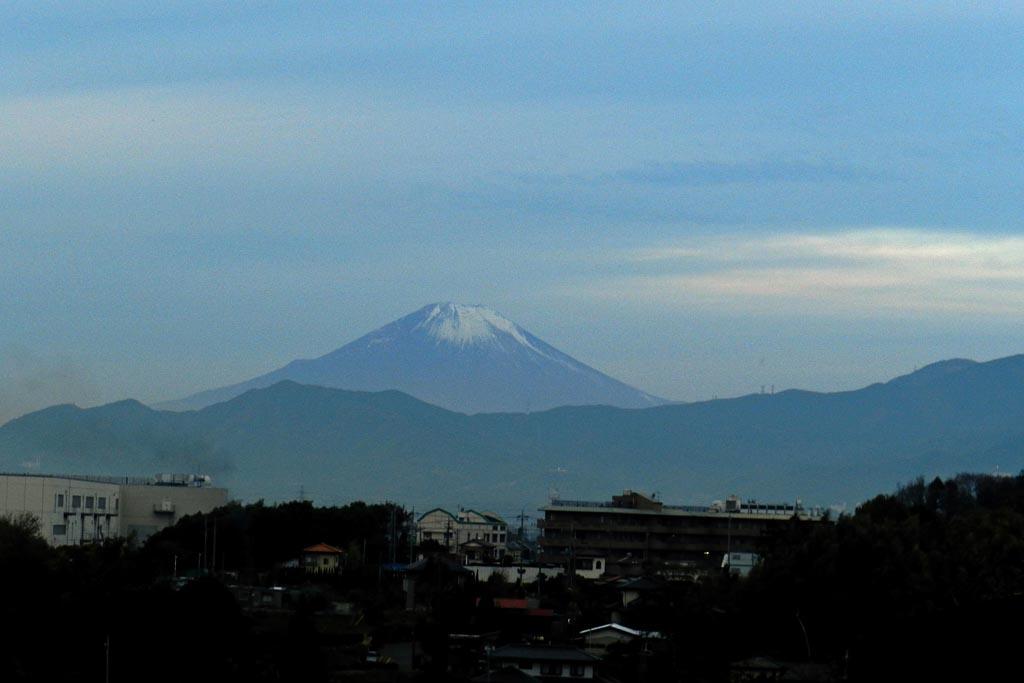 遅ればせながらタゲリ/高曇りの富士山_b0024798_6131913.jpg