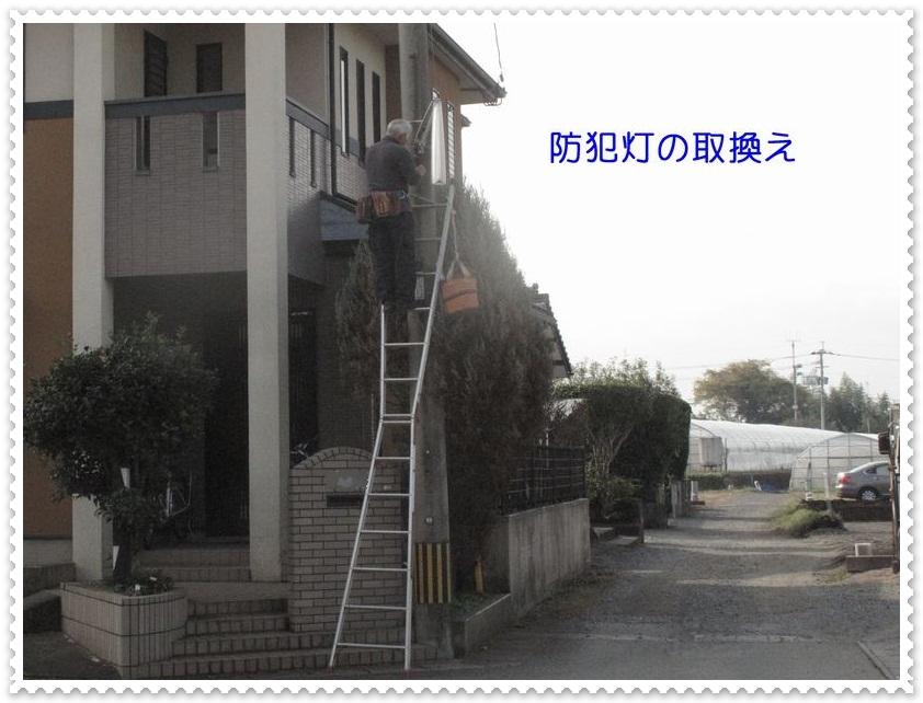 f0059498_1965033.jpg
