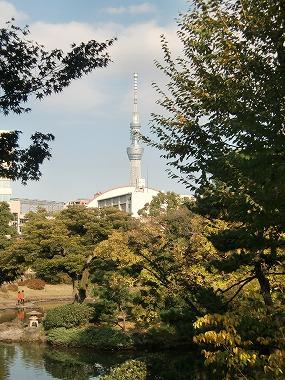 旧安田庭園(両国散歩 大江戸散歩)_c0187004_8501013.jpg
