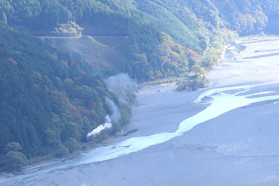 追いかけっこ - 2011年秋・大井川 -_b0190710_23413017.jpg