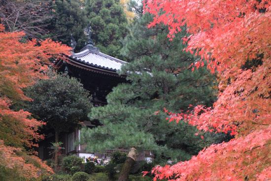 知恩院から粟田神社_e0048413_22443396.jpg