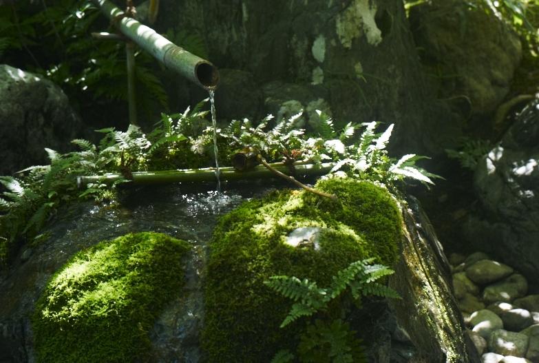 日本で一番美しい庭園_b0212922_13221212.jpg