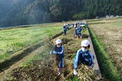 服間小学校の大豆収穫_e0061225_11484941.jpg