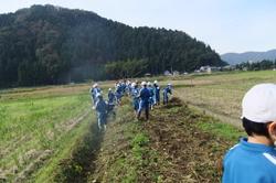 服間小学校の大豆収穫_e0061225_11492761.jpg