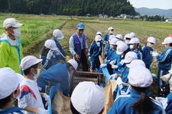 服間小学校の大豆収穫_e0061225_11494594.jpg