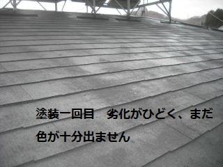 f0031037_1955322.jpg
