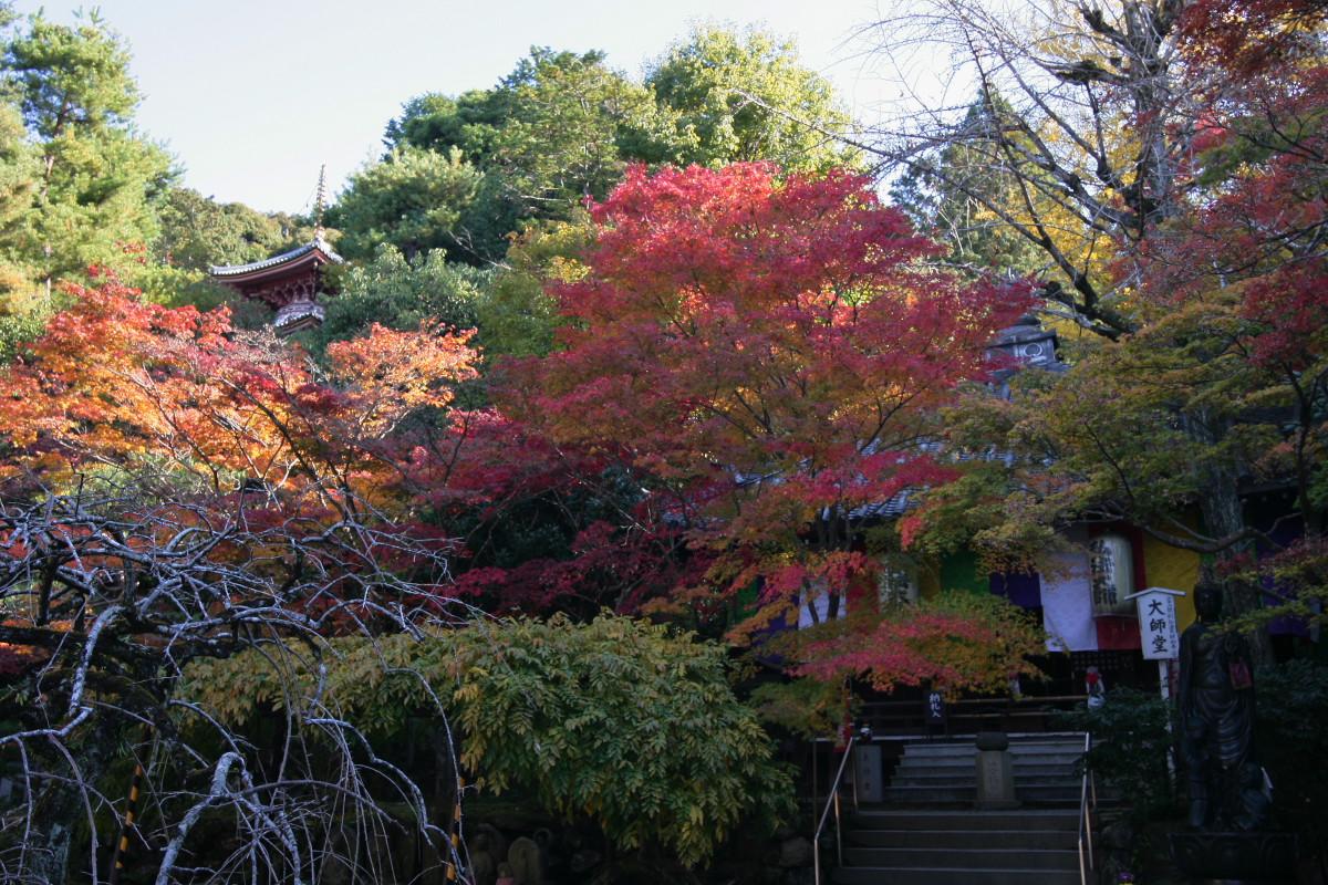 紅葉 2011  東山  今熊野観音寺_f0021869_23361765.jpg