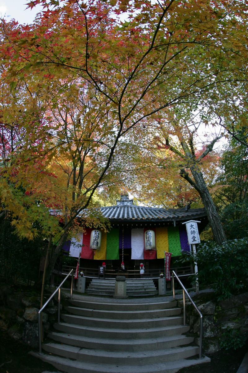 紅葉 2011  東山  今熊野観音寺_f0021869_23401075.jpg