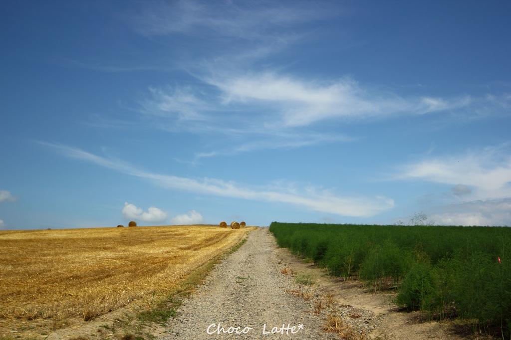 空と大地と風と旅 ♪_b0206470_1942395.jpg