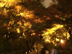 京都~♪_e0251265_19382710.jpg
