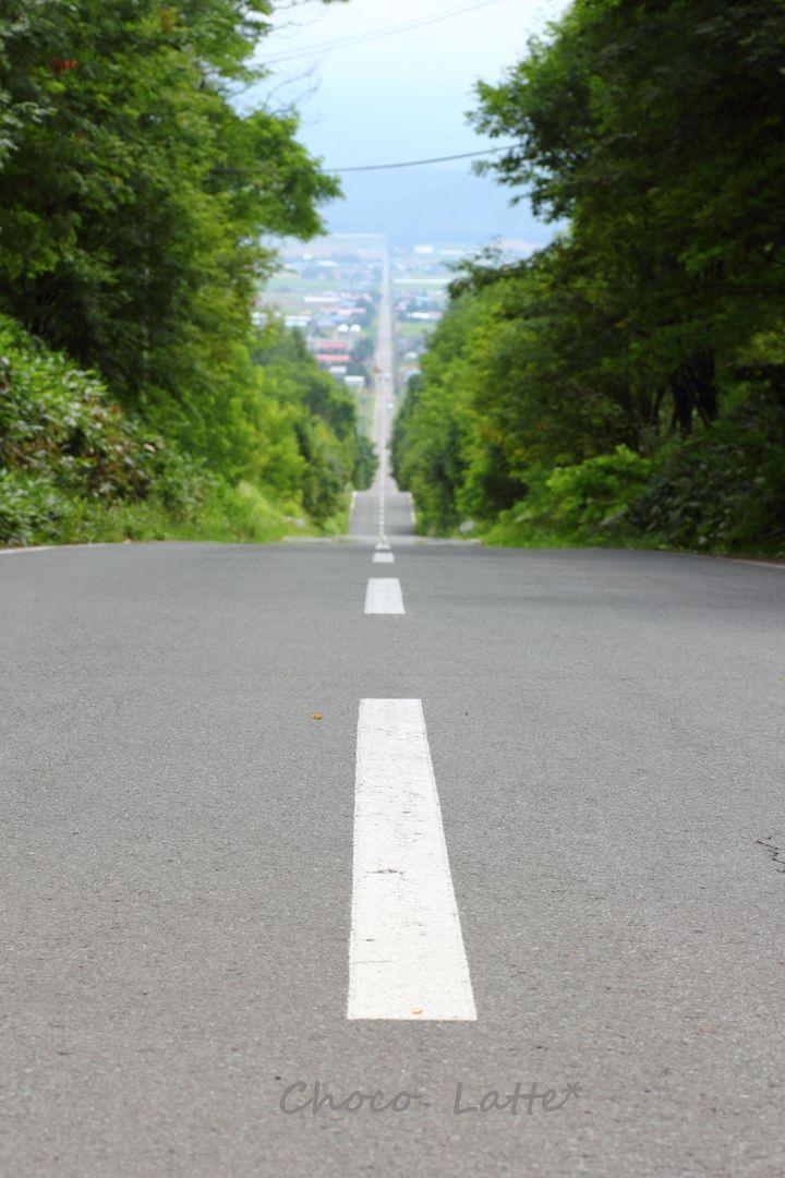 そうだ♪ 富良野に行こう♪_b0206470_1952114.jpg
