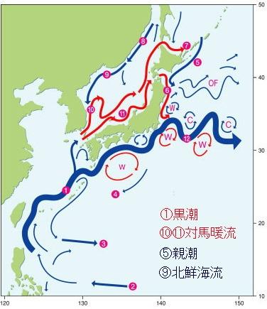 日本人をみて納得させられたこと、フクシマはジェノサイドであったと by Howard Francis_c0139575_20383329.jpg