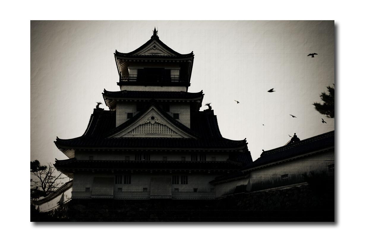 高知城にて_e0214724_14124310.jpg
