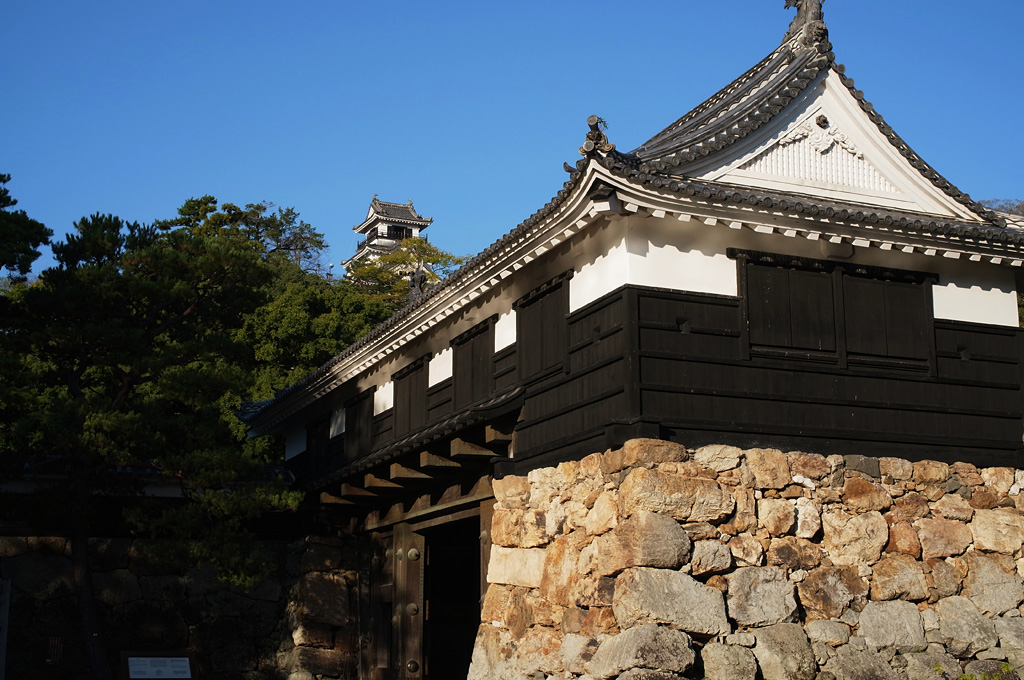 高知城にて~そのニ_e0214724_22164859.jpg