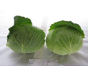 農畜産物品評会 優秀賞 _c0141652_13505199.jpg