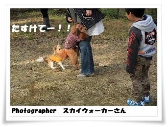 c0135363_1643235.jpg