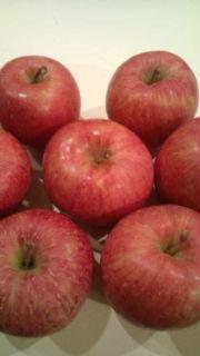 Apple_a0059281_17574820.jpg