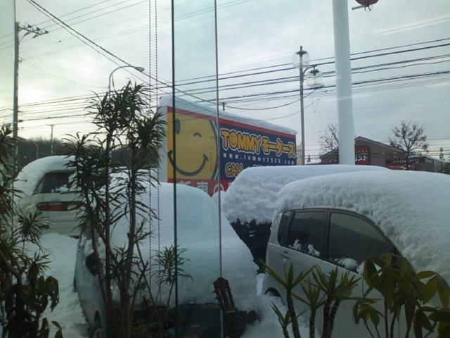 雪との戦いです(☆o☆)_b0127002_905858.jpg
