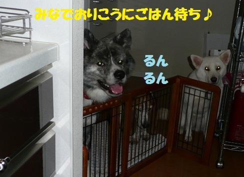f0121712_15305468.jpg