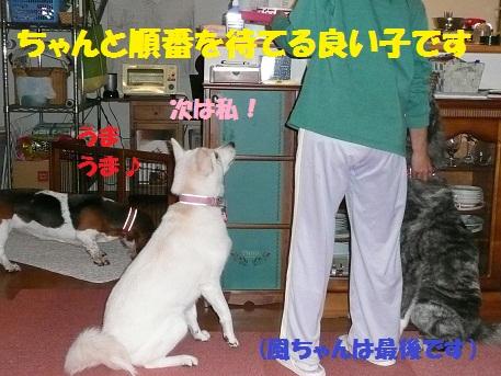 f0121712_15311778.jpg