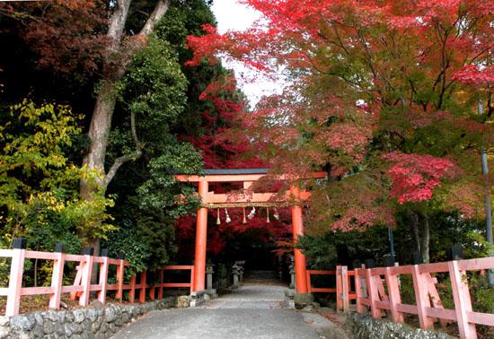 太田神社と本満寺_e0048413_10394123.jpg