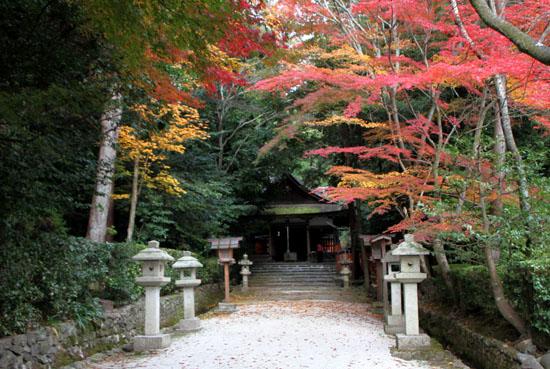 太田神社と本満寺_e0048413_10395671.jpg