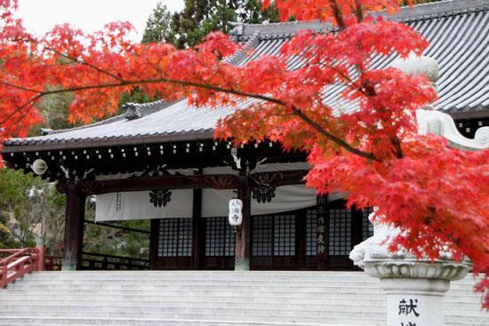 太田神社と本満寺_e0048413_10403423.jpg