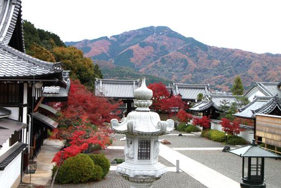太田神社と本満寺_e0048413_10404574.jpg