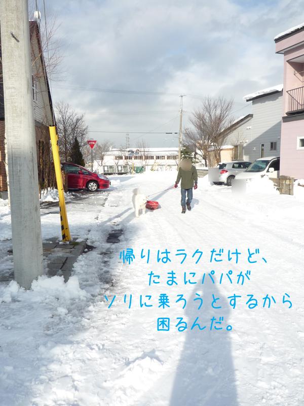 b0146024_2035166.jpg