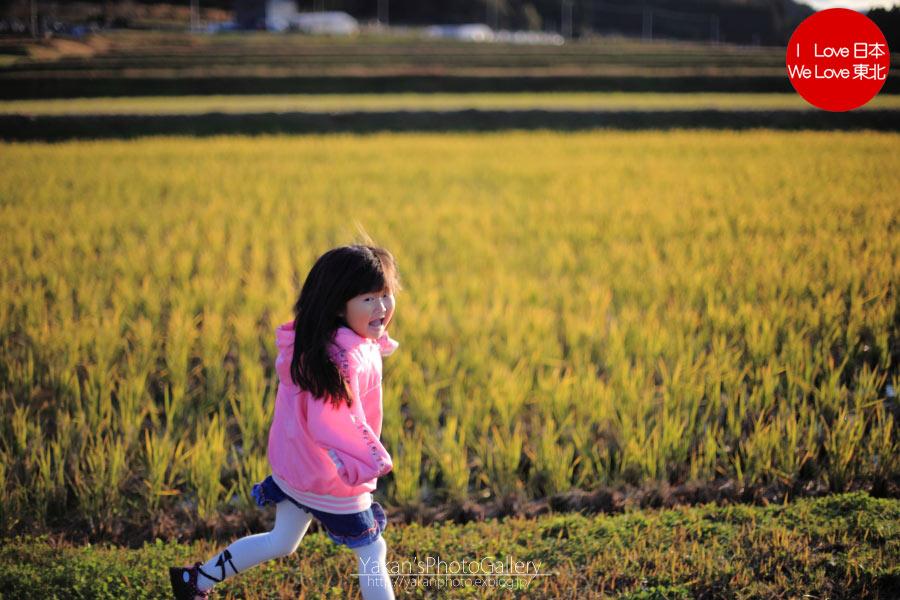 娘と秋の散歩道_b0157849_16533067.jpg