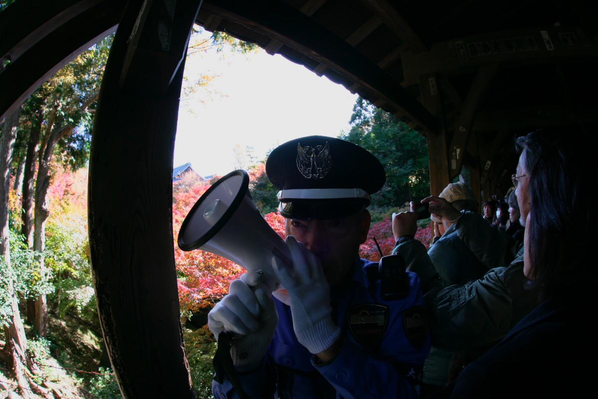 紅葉 2011  東山   東福寺_f0021869_1144343.jpg