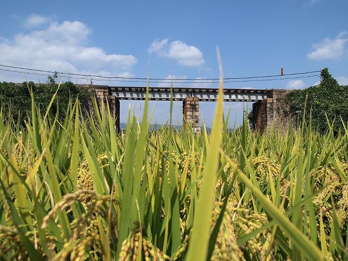 吉備線の橋梁2_f0116479_13424013.jpg