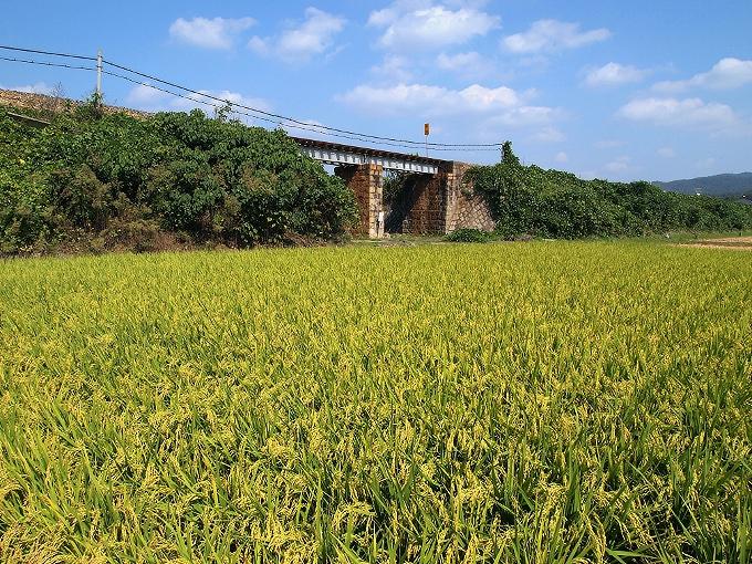吉備線の橋梁2_f0116479_13441911.jpg