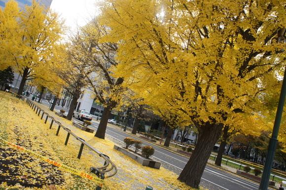 帰国日記@ベルリンVol.7 たった一泊しかも滞在時間20時間ちょっとの札幌で。_c0180686_1713416.jpg