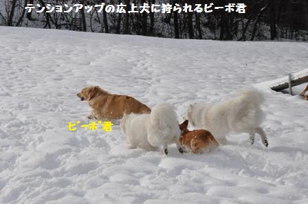 f0212597_20471669.jpg