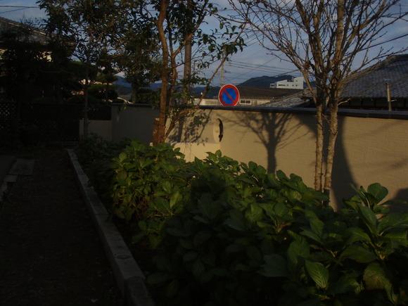 日南市H様邸和風塀renovation工事_b0236217_21292483.jpg